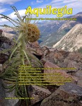 Aquilegia, Vol. 40 No. 1 - Winter 2015-2016, Newsletter of the Colorado Native Plant Society by Jan Loechell Turner, Rob Pudim, Mo Ewing, Jim Borland, Linda Smith, Nan Daniels, Charlie Turner, Carol English, and Sally L. White